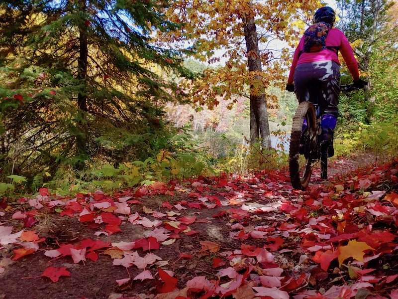 The mountain bike trails in Marquette County are some of the most brutally famous trails in the country.